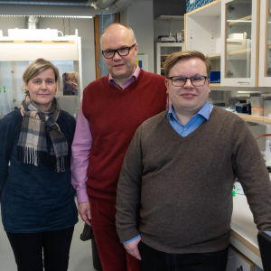 Annamari Heikinheimo, Marko Virta och Teppo Hiltunen.