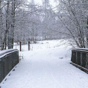Kävelysilta Mustalahden yli Hietasaaressa suunnitellun huvipuiston alueella.