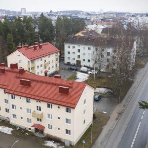 1950-luvun kerrostaloja Joensuun Koulukadun varrella.