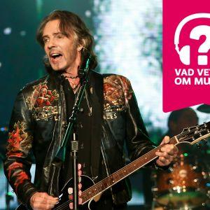 Rick Springfield står bakom en mikrofonställning och spelar gitarr.