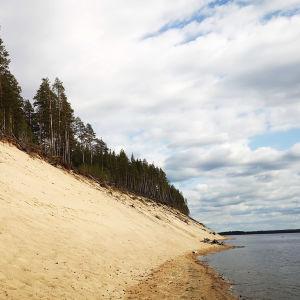 Saari, jossa korkea harjumainen muodostelma hienoa vaaleaa hiekkaa, ylhäällä mäntymetsää.