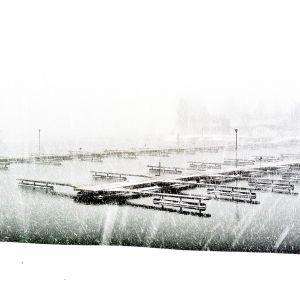 Sandudd, Helsingfors den 30.11.2012