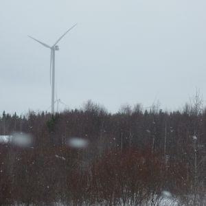 Olhava vindkraftspark. Vy från byn.