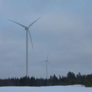 Vindkraftverken reser sig högt ovanför skogen.