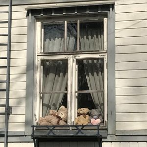 Nallet istuvat ikkunanlaudalla.