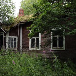 Puinen, hylätty talo kasvillisuuden keskellä.