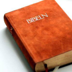 en bok som  handlar om bibeln