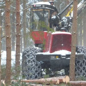 Kjell Dahlberg gallrar skog i Tenala.