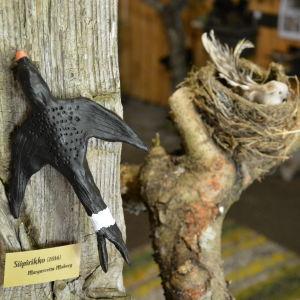 Fåglar på Oktonauternas utställning.