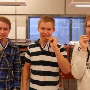 Robin Laine, Tobias Wik och Fredrik Kortell fick medalj i Mästare 2014 tävlingen i yrkeskunskap