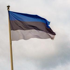 Risainen Viron lippu.