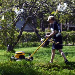 En tonåring klipper gräs i en trädgård.