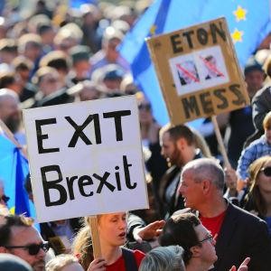 Demonstration mot brexit i London.