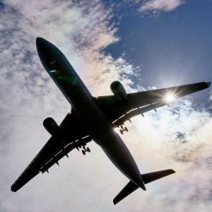 Flygande flygplan underifrån.