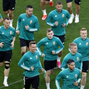 Ungerns fotbollslandslag inför EM-öppningen mot Portugal.