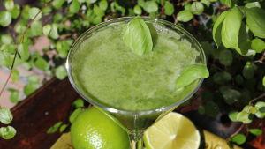 Grön dryck i cocktailglas med basilika blad som dekoration.