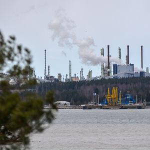 Sköldvik hamn med många höga skorstenar. Det kommer vit rök från området. Ett träd syns i förgrunden.