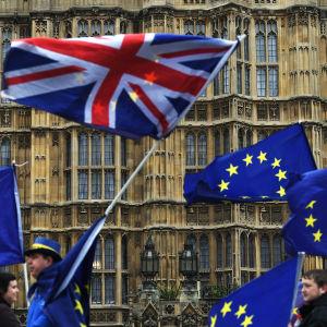 Mielenosoittajia parlamenttitalon edustalla Lontoossa.