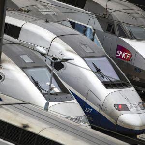 TGV-tåg