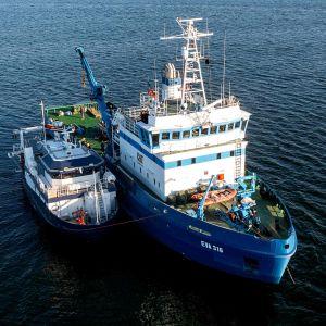 Dykningar vraket efter Estonia