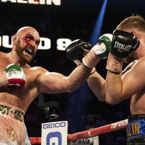 Tyson Furys ögonbryn tog stryk i matchen mot Otto Wallin.