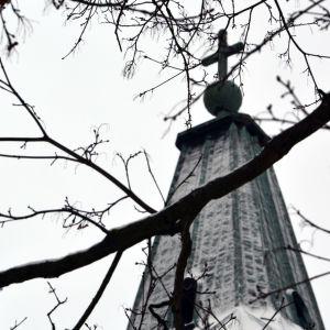 Ett kors på toppen av domkyrkan med grenar i silhuett mot bakgrunden.
