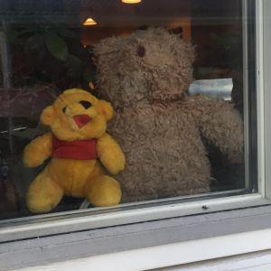 Två nallar i ett fönster i Skata i Jakobstad.