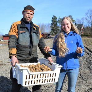 En man och en kvinna på en potatisåker. Mannen har en korg med potatisar i händerna. Kvinnan visar upp potatisar.