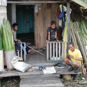 Största delen av barnarbetarna i Indonesien jobbar på palmoljeodlingar. De bor i fattiga byar som ofta omges av oljepalmer.