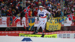 Calle Halfvarsson skidar under VM i Falun 2015.