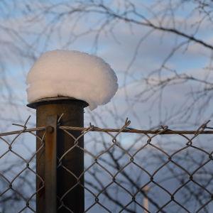 Snötopp på en stolpe.