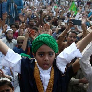 Upprörda demonstranter i Pakistans största stad Karachi protesterar mot terrorattacken mot en Sufi-helgedom den 17 februari då mi nst 83 människor dödades. Över 250 personer skadades i terrordådet.