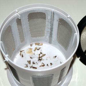 Ötökkä-hyttysansassa hyttysiä.