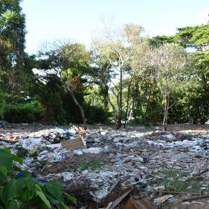 Osorterat avfall dumpas på olagliga soptippar också i skogsdungar i städerna. Här bildar avfallet ett mer än fem meter djupt lager.