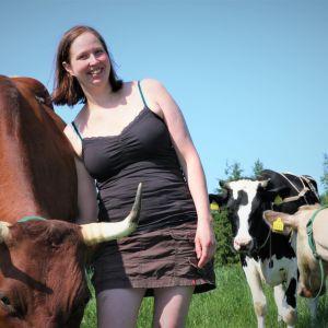 Mirva Tikkanen silittää lehmää.