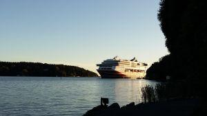 Viking Grace på väg in till Åbo hman.