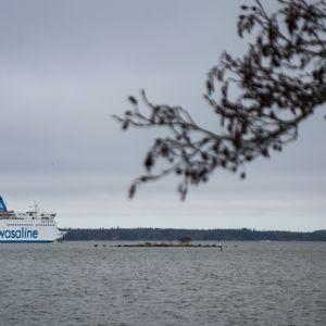 Wasa Express -alus matkalla Vaasasta Uumajaan
