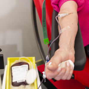 verenluovutus, veripussi, näytepussi