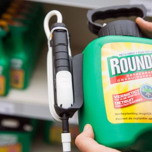 En flaska med ogräsmedlet Roundup.