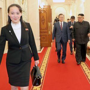 Kim Jong-Uns yngre syster Kim Yo-Jong har höjt sin profil både utomlands och på hemmaplan under de senaste åren .