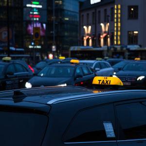 bild på taxin