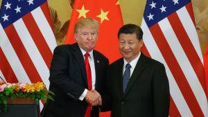 President Donald Trump och Kinas president Xi Jinping skakar hand under en presskonferens i Peking 9.11.2017.