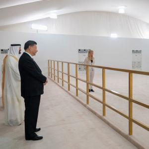 Kinas president