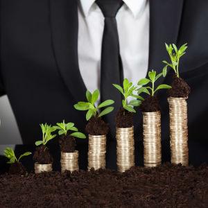 En kostymklädd man håller händerna kring staplar med mynt med gröna kvistar växandes från dem.