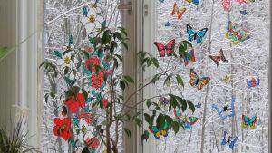 Ett fönster, fotat inifrån, med fastklistrade fönsterdekaler (granna fjärilar och blommor) Riktiga blommor vid fönsterbrädet.