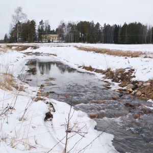 Muddrade Hardombäcken i Haddom 08.03.2019