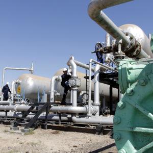 Vid oljefältet al-Fakka i Irak.
