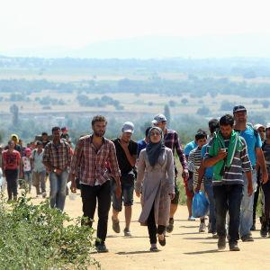 Flyktingar korsar gränsen mellan Makedonien och Serbien 2015.