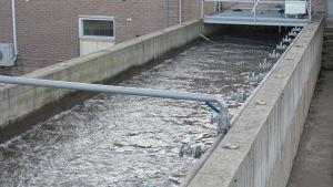 En kanal fylld med vatten och luftkranar längs kanterna.