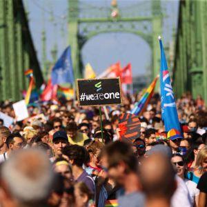 Hundratals personer marscherar i prideparad.